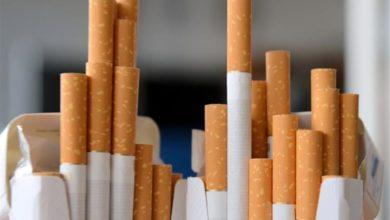 Photo of الشرقية للدخان ترفع أسعار سجائر مونديال بقيمة 1.5 جنيه