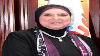 Photo of وزيرة التجارة والصناعة تصدر قراراً باشتراطات الافراج عن سيارات الركوب الكهربائية