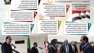 Photo of بالإنفو جراف… الحصاد الأسبوعي لمجلس الوزراء خلال الفترة من 15 حتى 21 أغسطس 2020