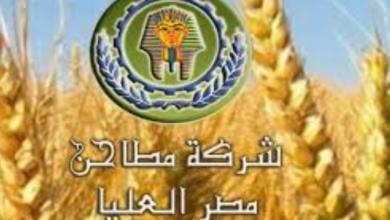 """Photo of """"مطاحن مصر العليا"""" تقترح توزيع كوبون بقيمة 10 جنيهات للسهم"""