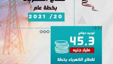 Photo of وزارة التخطيط والتنمية الاقتصادية تعلن الملامح الأساسية لمستهدفات قطاع الكهرباء والطاقة المتجددة بخطة عام 20/2021