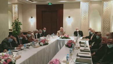 Photo of وزير الزراعة يبحث مع محافظ جنوب سيناء آفاق التنمية الزراعية في المحافظة وحل مشاكل المزارعين والمربين