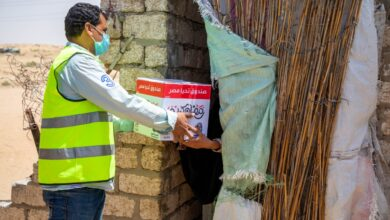 Photo of صندوق تحيا مصر يوفّر 75 طن مواد غذائية لـ 4100 أسرة