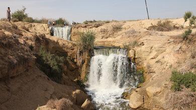 Photo of البيئة تقرر إغلاق المحميات في شم النسيم للحد من التجمعات