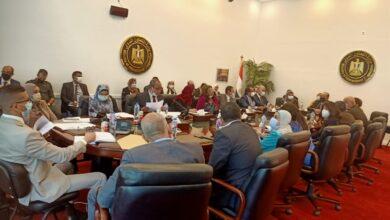 Photo of وزارة التعاون الدولي تعقد اجتماعًا تنسيقيًا في إطار الإعداد للدورة الأولى من اللجنة العليا المشتركة بين مصر وجنوب السودان